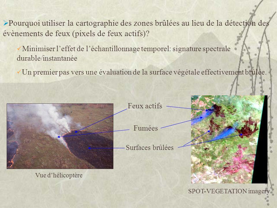 SPOT-VEGETATION imagery