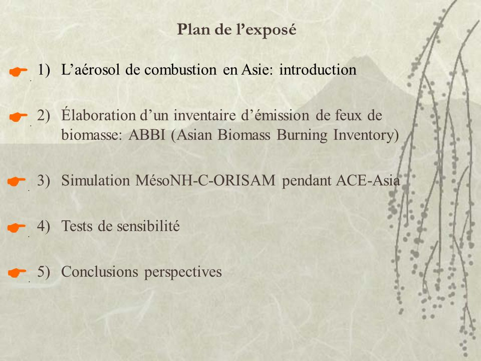 Plan de l'exposé L'aérosol de combustion en Asie: introduction