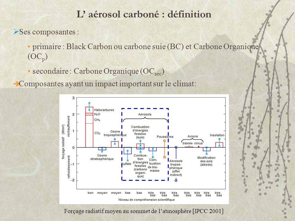 L' aérosol carboné : définition