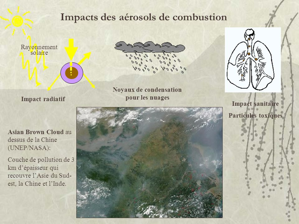 Impacts des aérosols de combustion