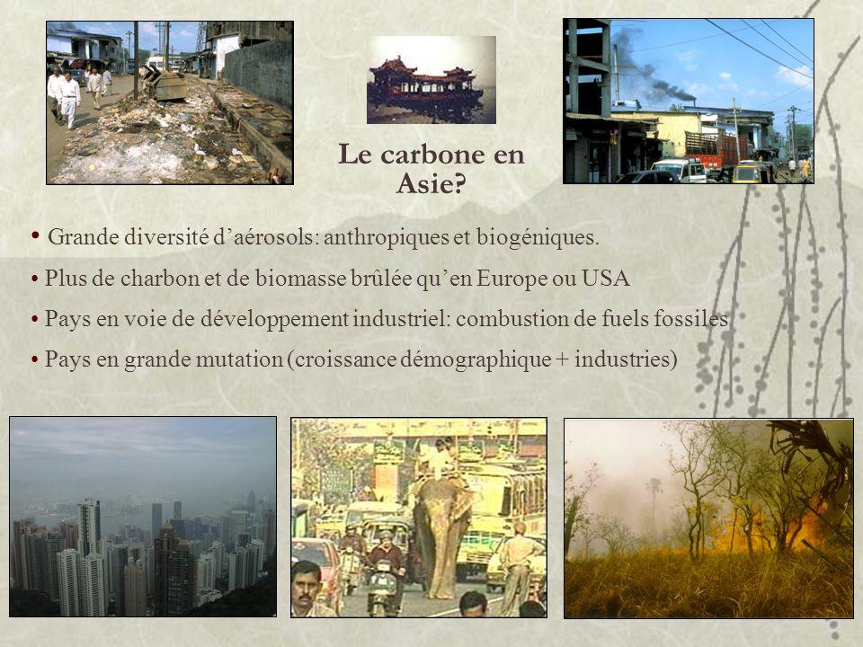 Le carbone en Asie Grande diversité d'aérosols: anthropiques et biogéniques. Plus de charbon et de biomasse brûlée qu'en Europe ou USA.