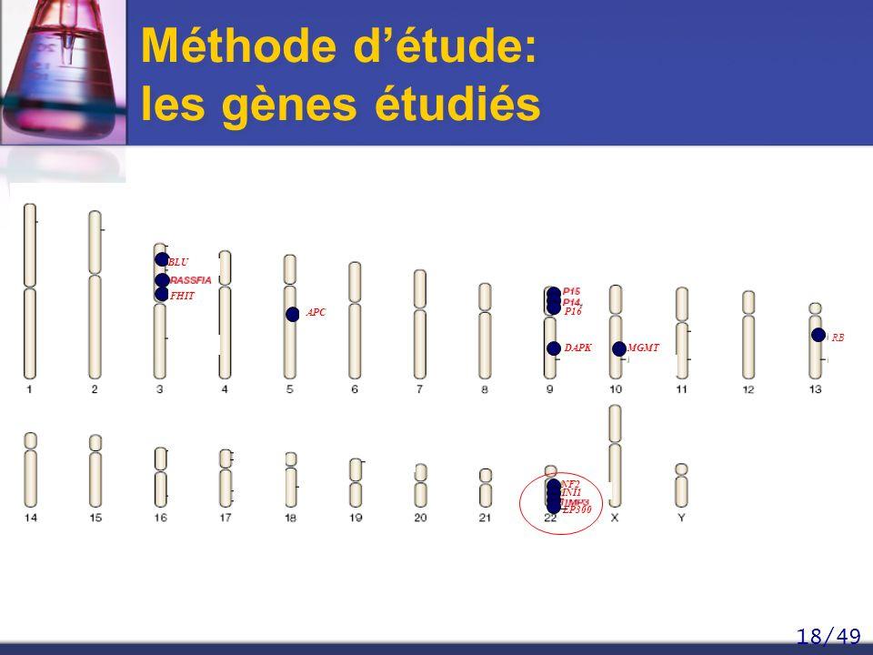 Méthode d'étude: les gènes étudiés