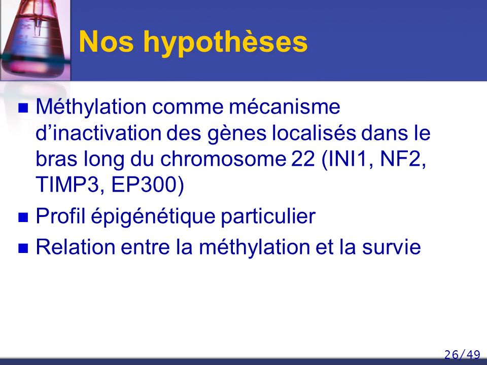 Nos hypothèses Méthylation comme mécanisme d'inactivation des gènes localisés dans le bras long du chromosome 22 (INI1, NF2, TIMP3, EP300)