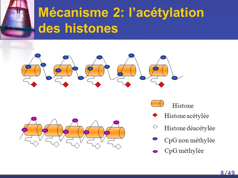 Mécanisme 2: l'acétylation des histones