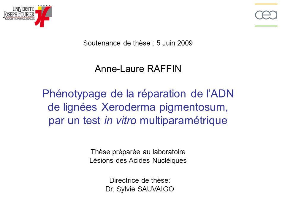Soutenance de thèse : 5 Juin 2009