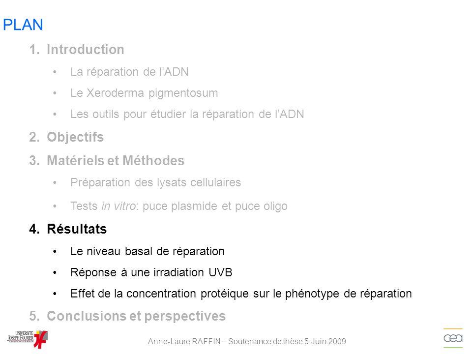 Anne-Laure RAFFIN – Soutenance de thèse 5 Juin 2009