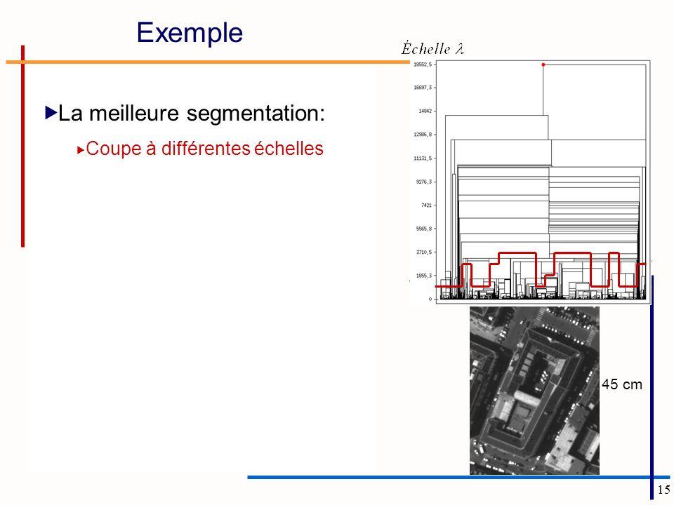 Exemple La meilleure segmentation: Coupe à différentes échelles 45 cm