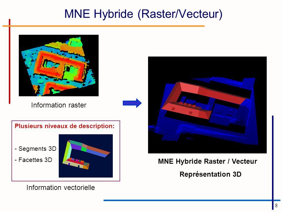 MNE Hybride (Raster/Vecteur)