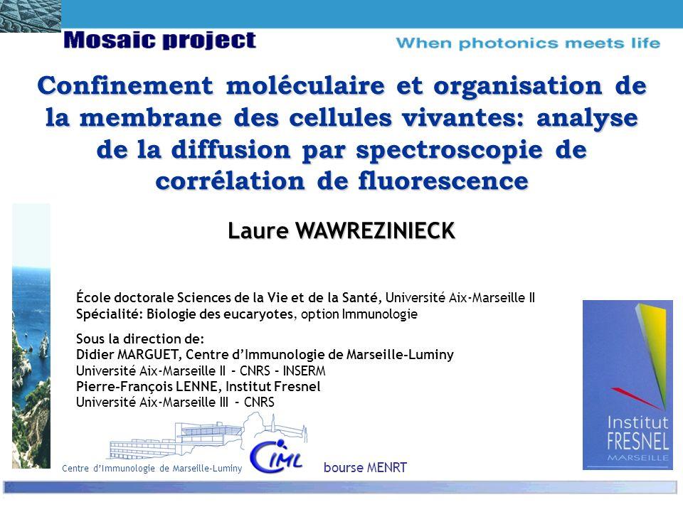 Centre d'Immunologie de Marseille-Luminy