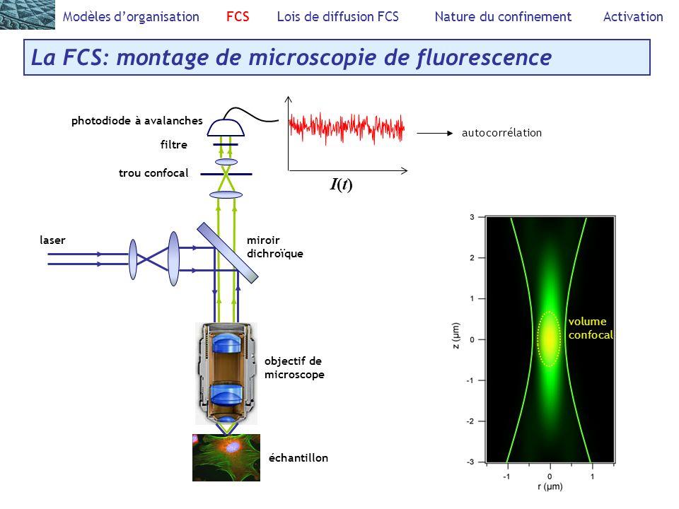 La FCS: montage de microscopie de fluorescence