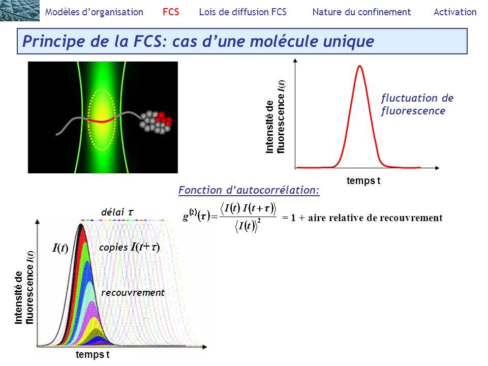 Principe de la FCS: cas d'une molécule unique