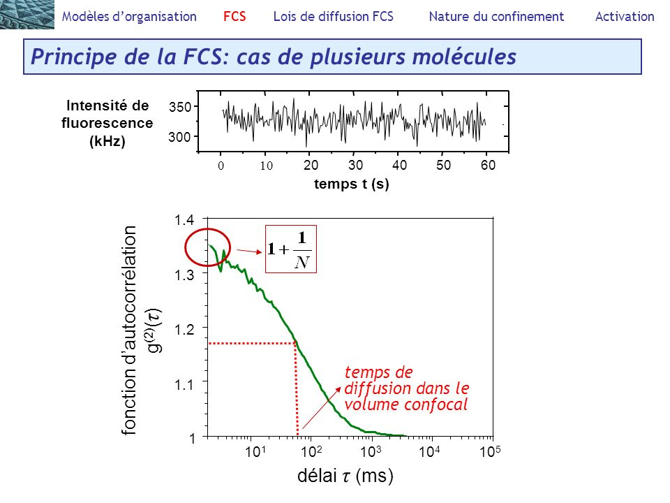 Intensité de fluorescence (kHz)