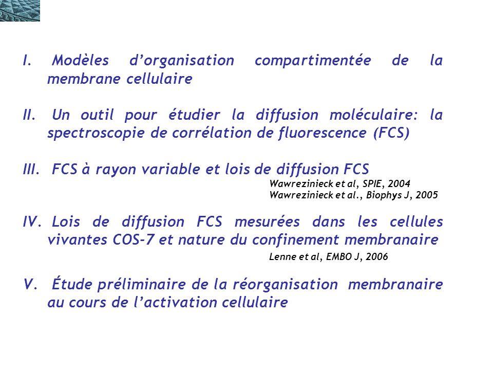 Modèles d'organisation compartimentée de la membrane cellulaire