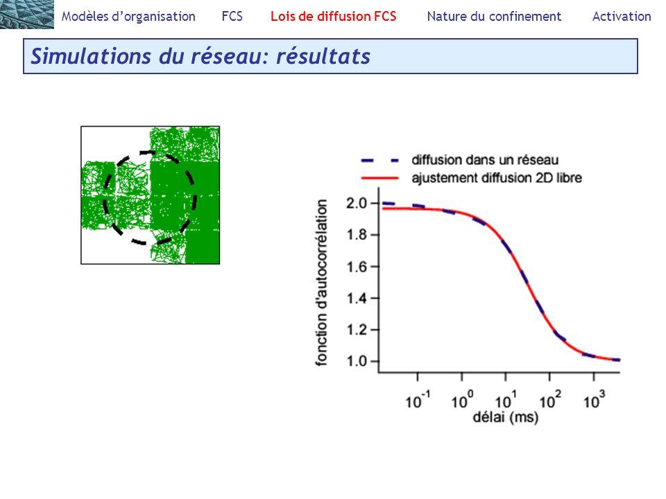 Simulations du réseau: résultats