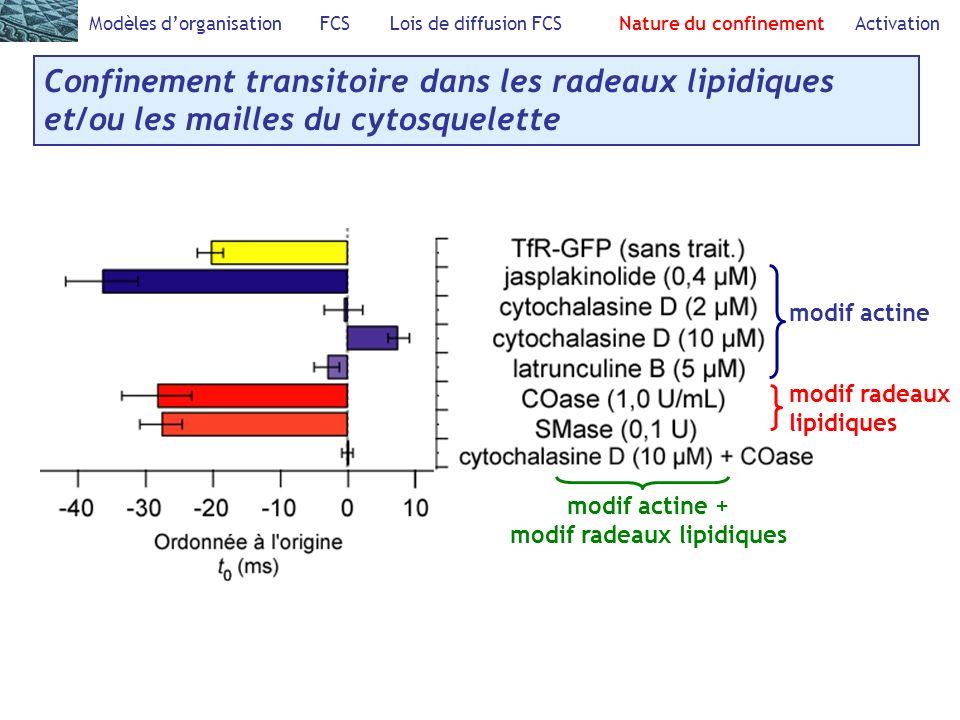 modif radeaux lipidiques