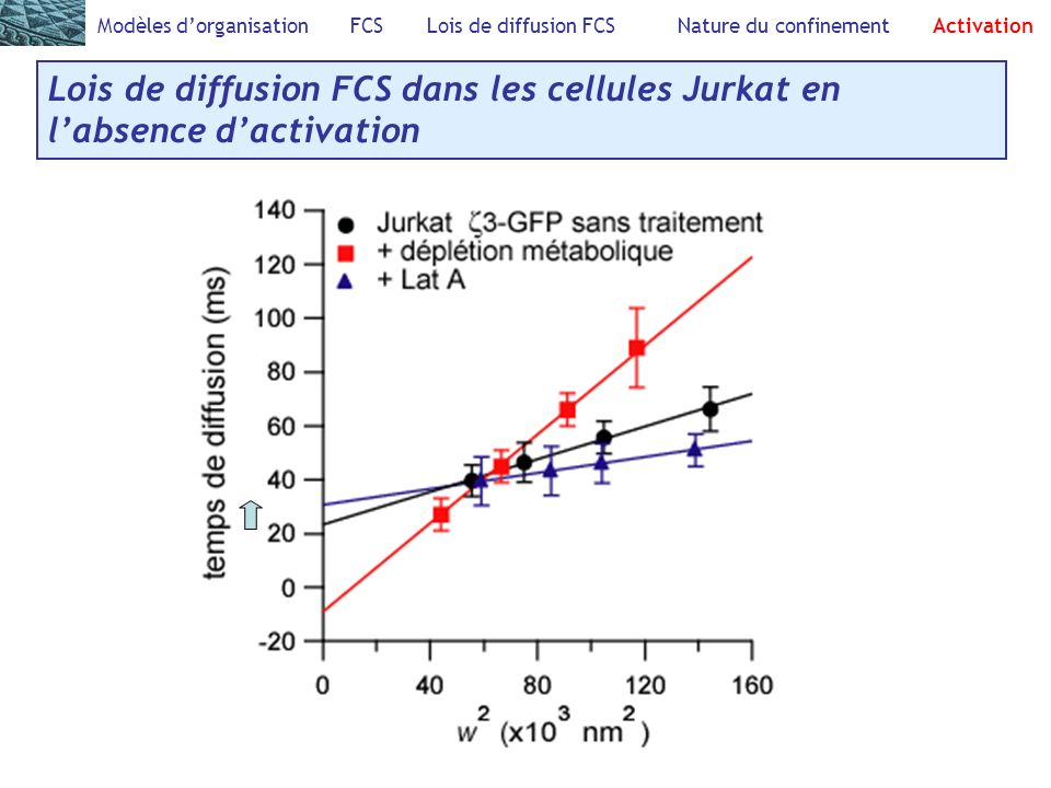 Modèles d'organisation FCS Lois de diffusion FCS Nature du confinement Activation