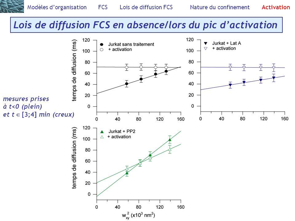 Lois de diffusion FCS en absence/lors du pic d'activation