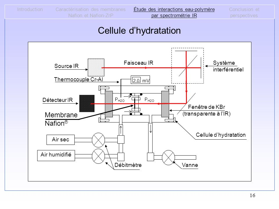Cellule d'hydratation