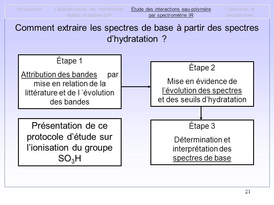 Présentation de ce protocole d'étude sur l'ionisation du groupe SO3H