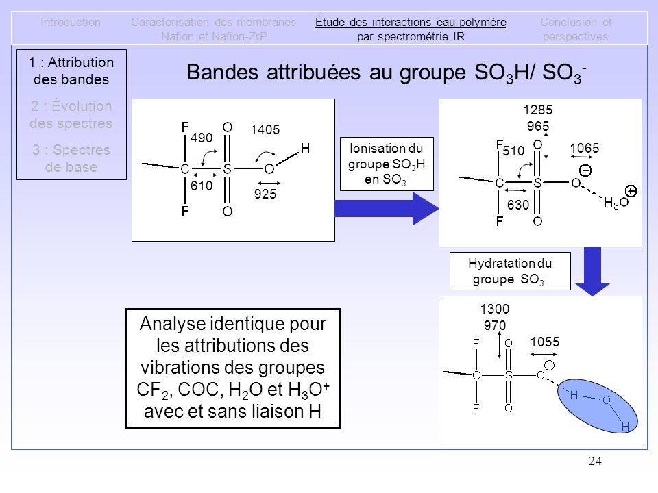 Bandes attribuées au groupe SO3H/ SO3-