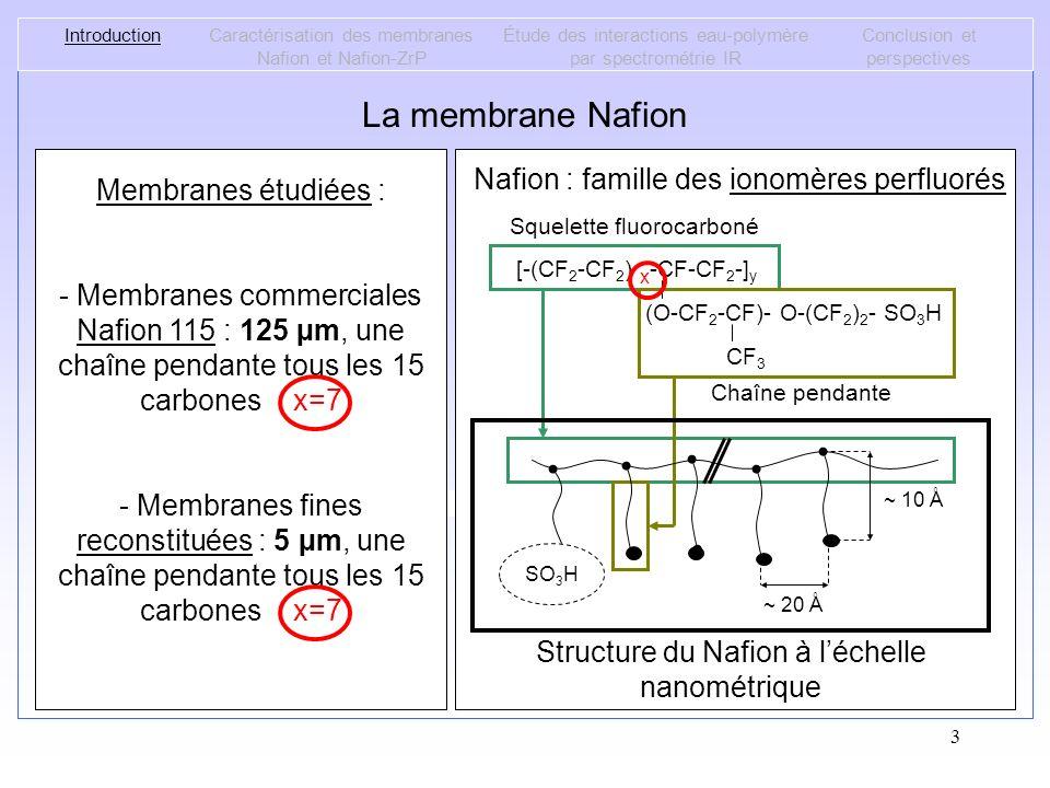 La membrane Nafion Nafion : famille des ionomères perfluorés