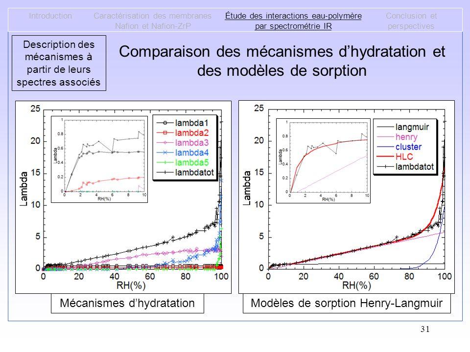 Comparaison des mécanismes d'hydratation et des modèles de sorption