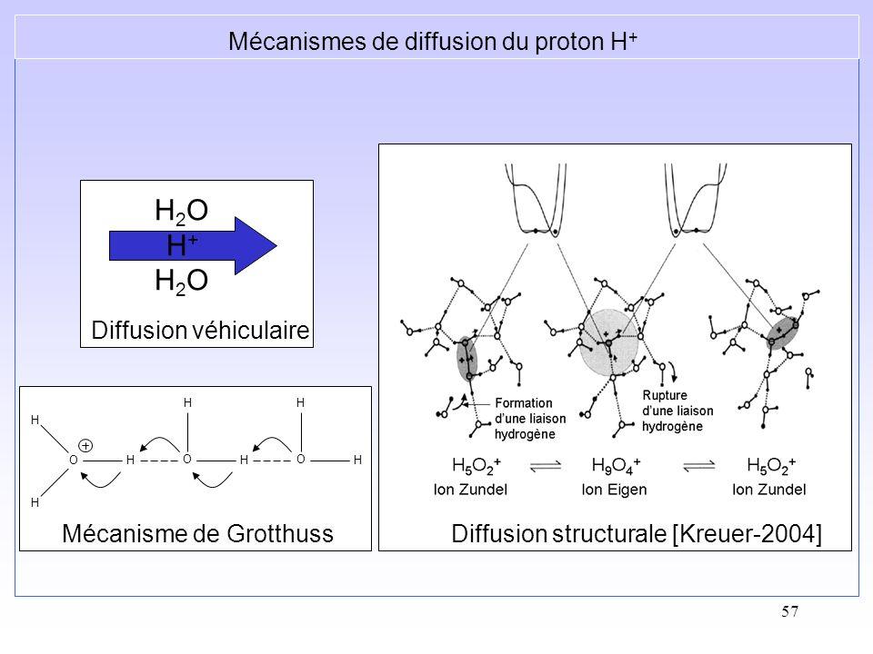 H2O H+ H2O Mécanismes de diffusion du proton H+