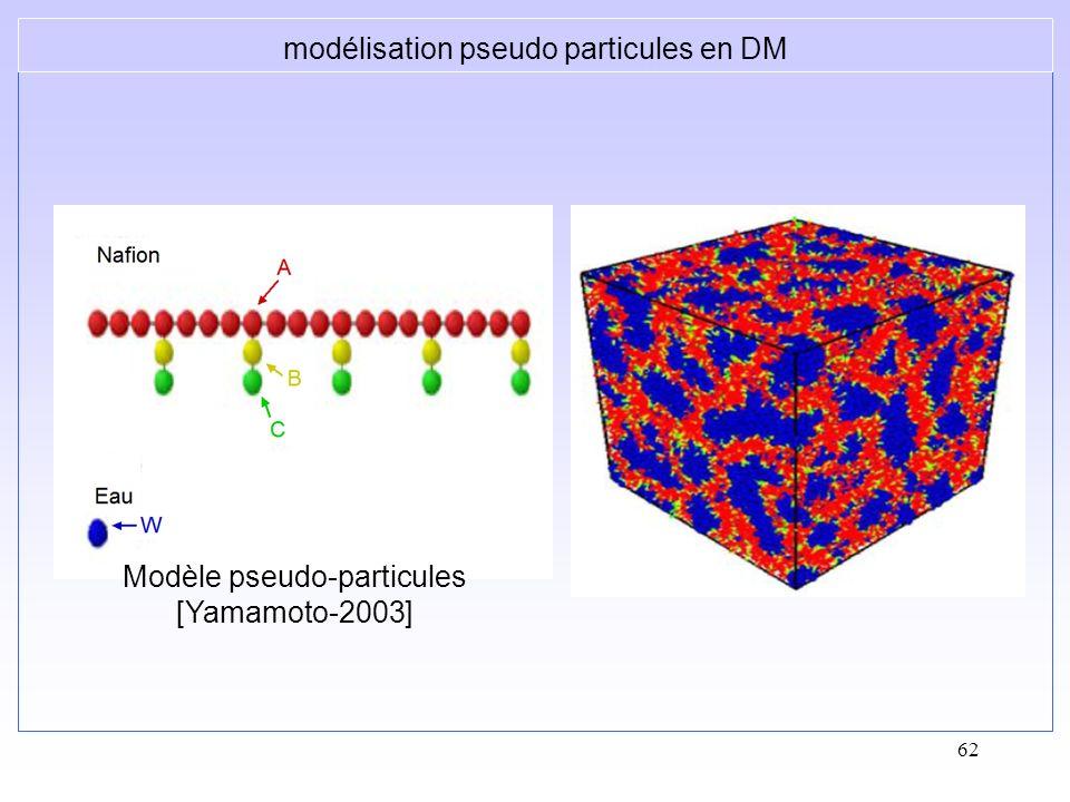 modélisation pseudo particules en DM