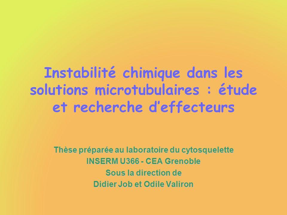 Instabilité chimique dans les solutions microtubulaires : étude et recherche d'effecteurs