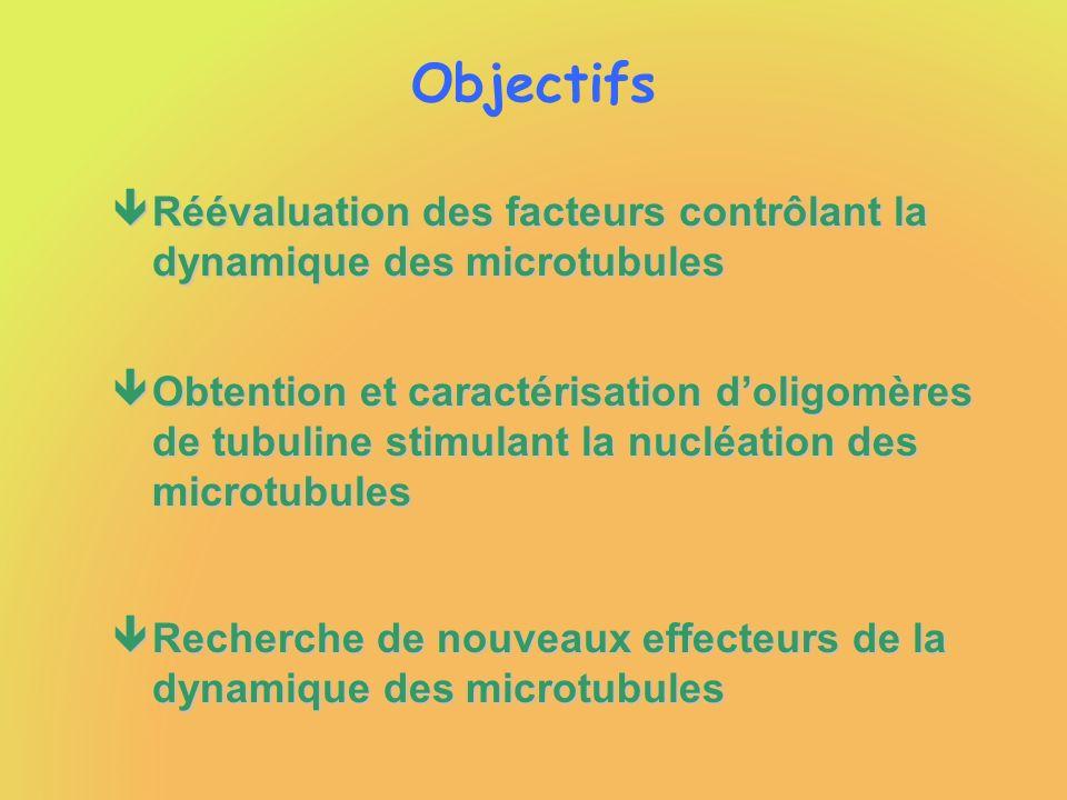 Objectifs Réévaluation des facteurs contrôlant la dynamique des microtubules.