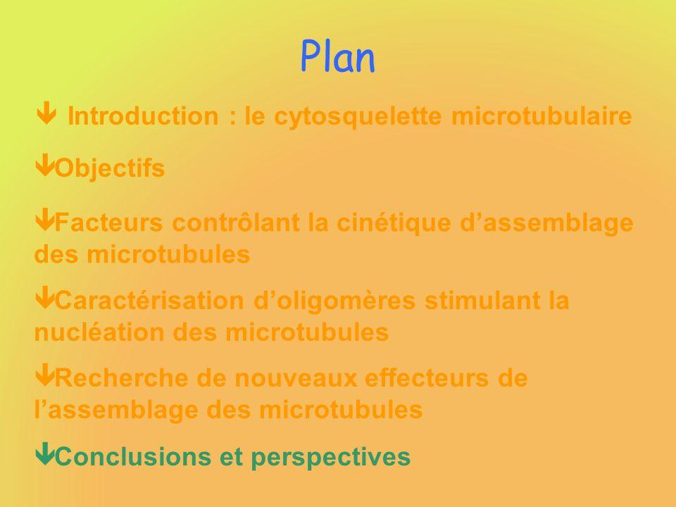 Plan Introduction : le cytosquelette microtubulaire Objectifs