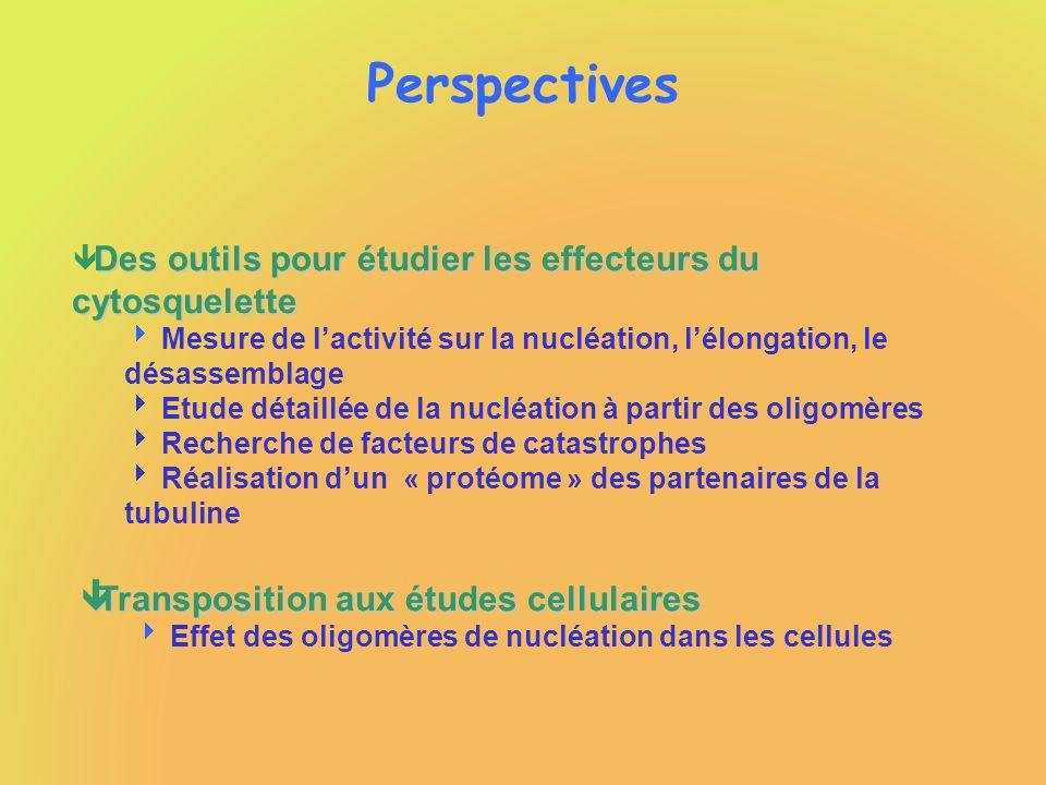 Perspectives Transposition aux études cellulaires