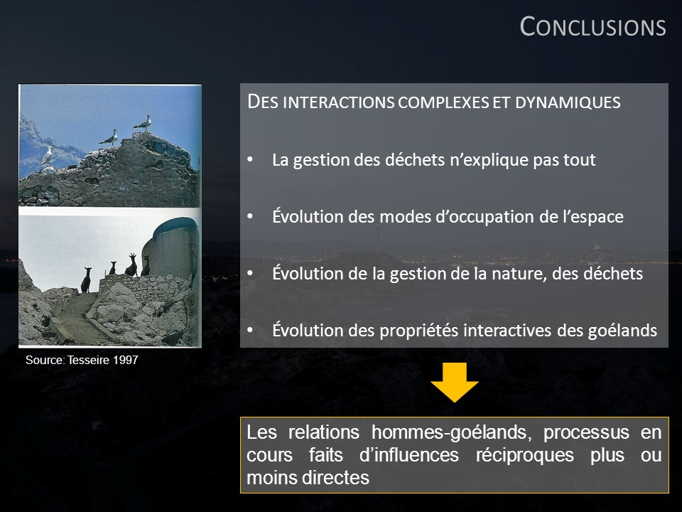 Conclusions Des interactions complexes et dynamiques