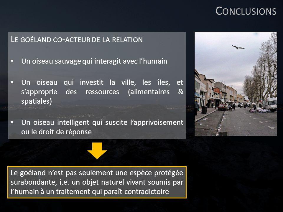 Conclusions Le goéland co-acteur de la relation