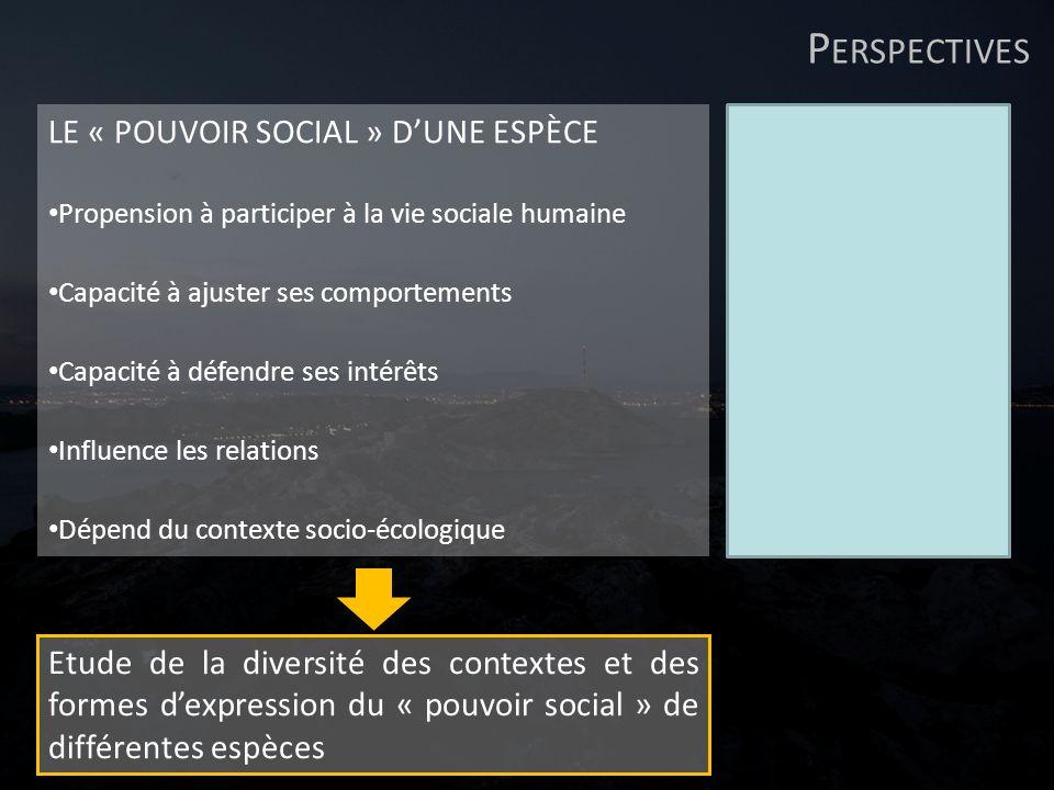 Perspectives LE « POUVOIR SOCIAL » D'UNE ESPÈCE