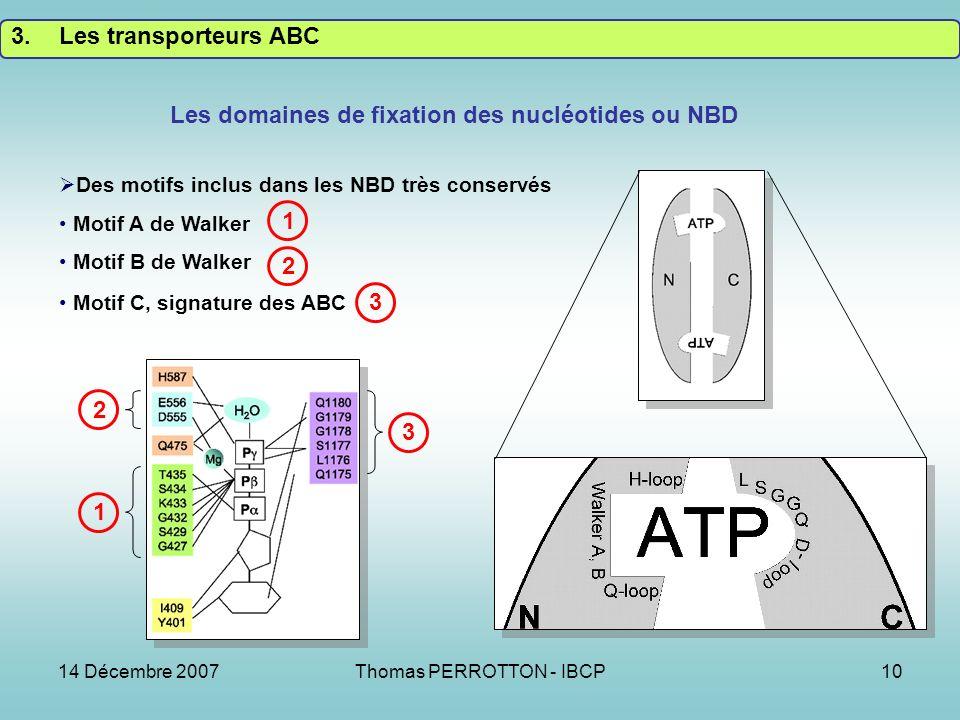 Les domaines de fixation des nucléotides ou NBD