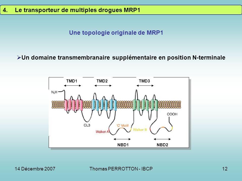 Une topologie originale de MRP1