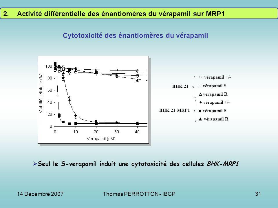 Cytotoxicité des énantiomères du vérapamil