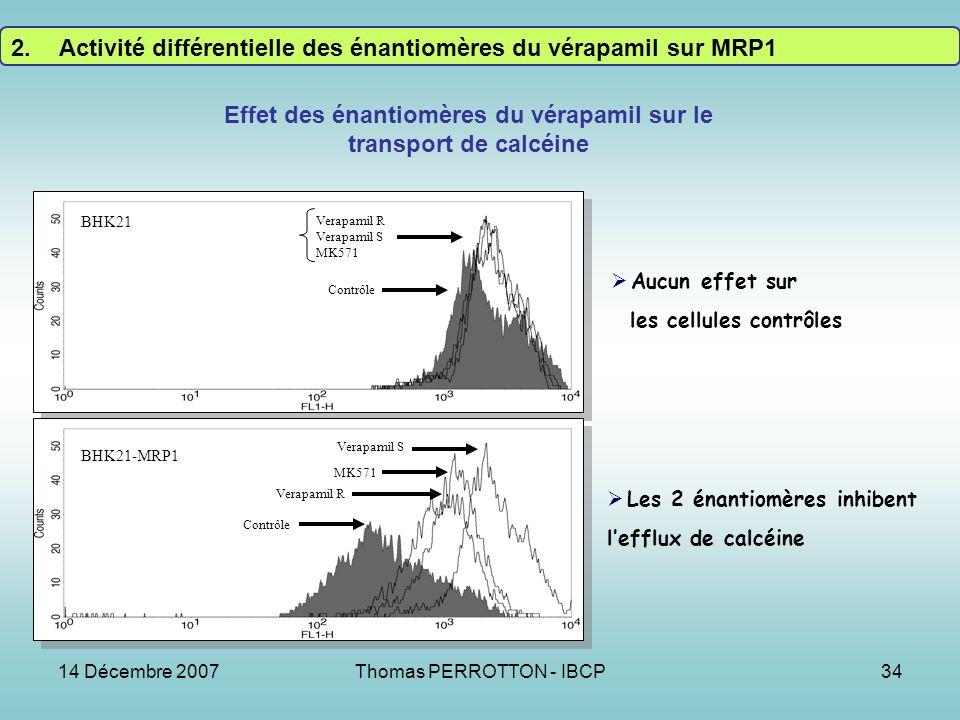 Effet des énantiomères du vérapamil sur le transport de calcéine
