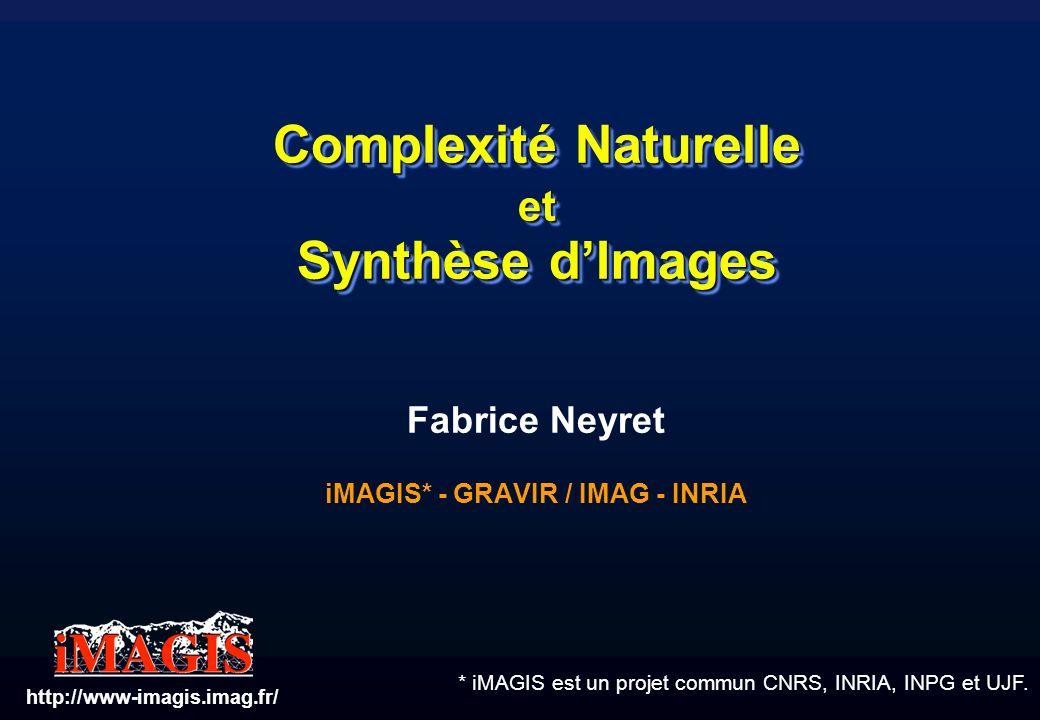 Complexité Naturelle et Synthèse d'Images