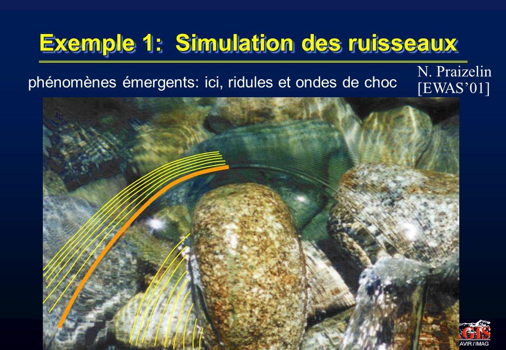 Exemple 1: Simulation des ruisseaux