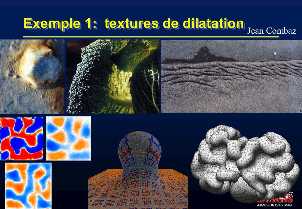 Exemple 1: textures de dilatation