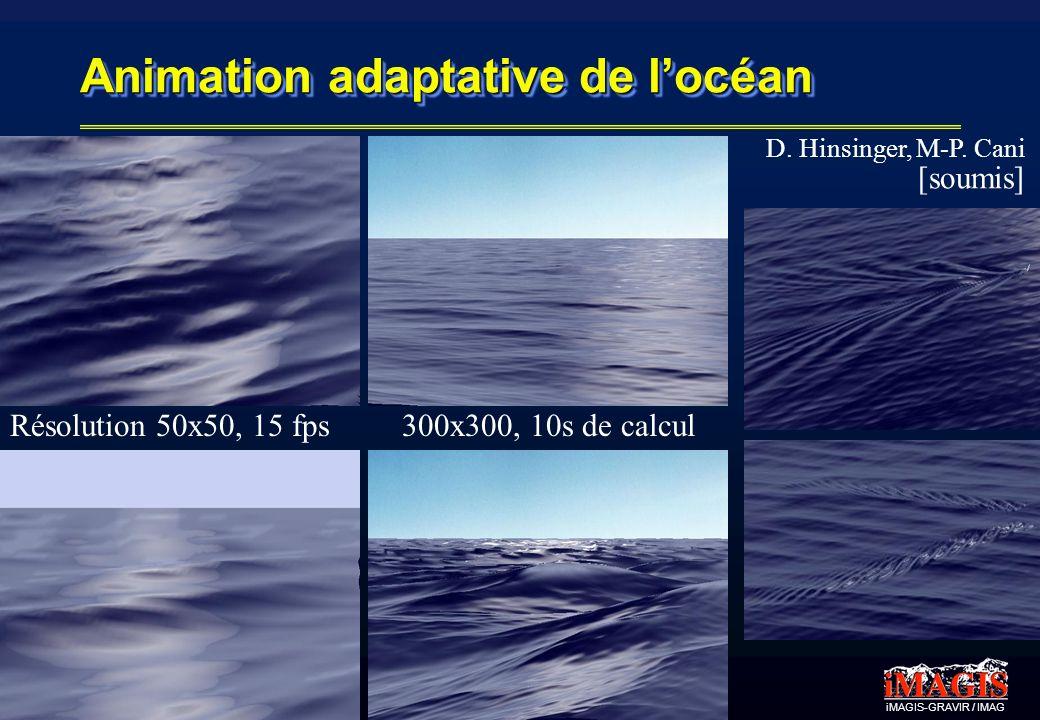 Animation adaptative de l'océan