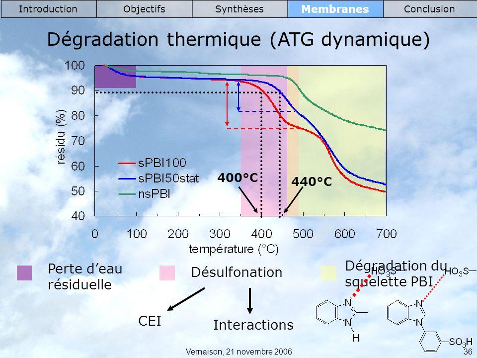 Dégradation thermique (ATG dynamique)