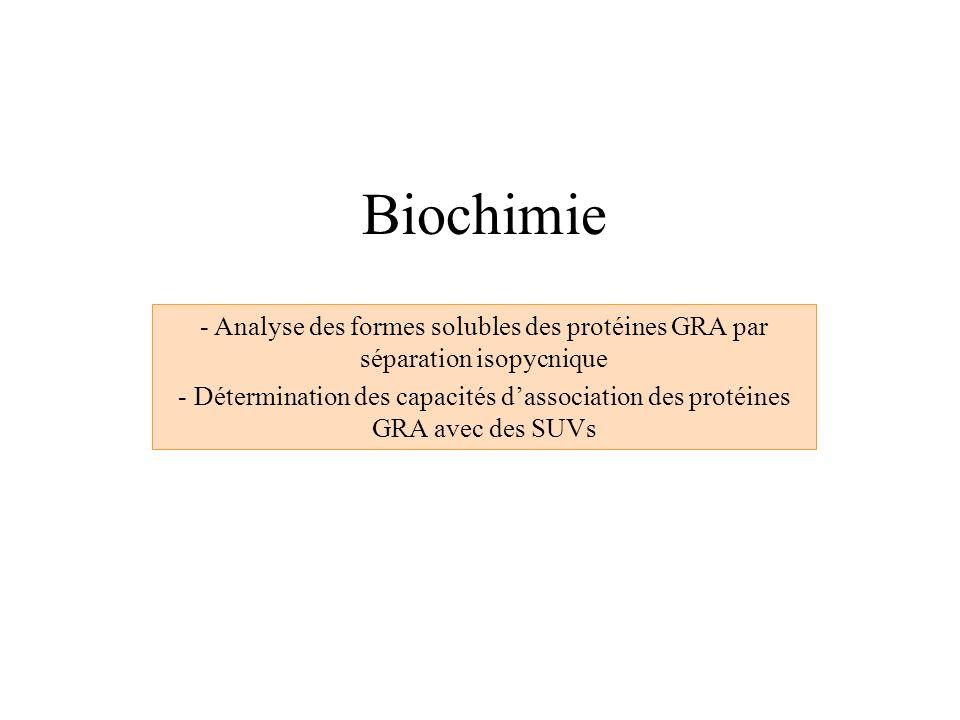 Biochimie Analyse des formes solubles des protéines GRA par séparation isopycnique.