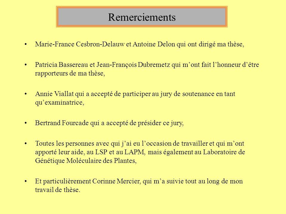 Remerciements Marie-France Cesbron-Delauw et Antoine Delon qui ont dirigé ma thèse,