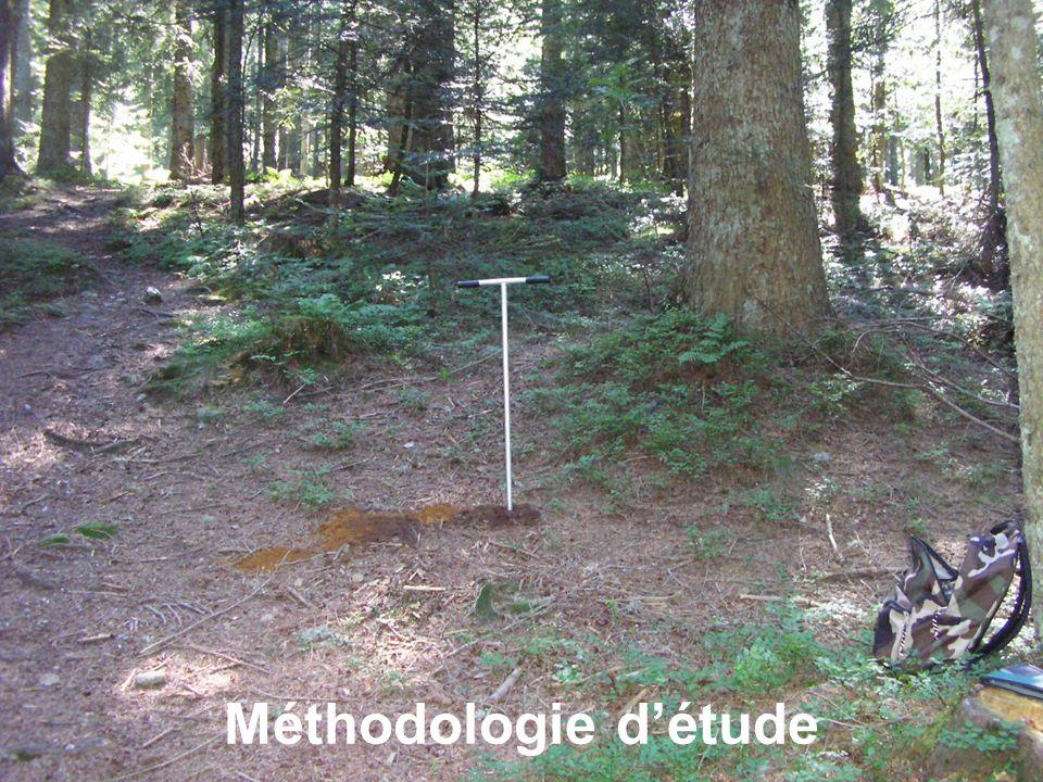 Méthodologie d'étude