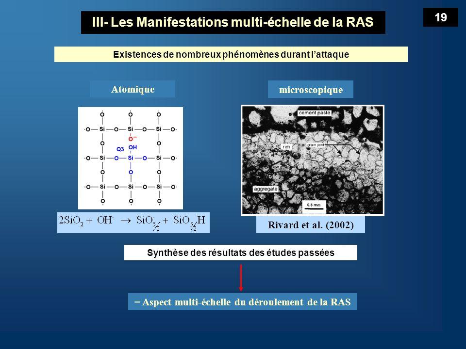 III- Les Manifestations multi-échelle de la RAS
