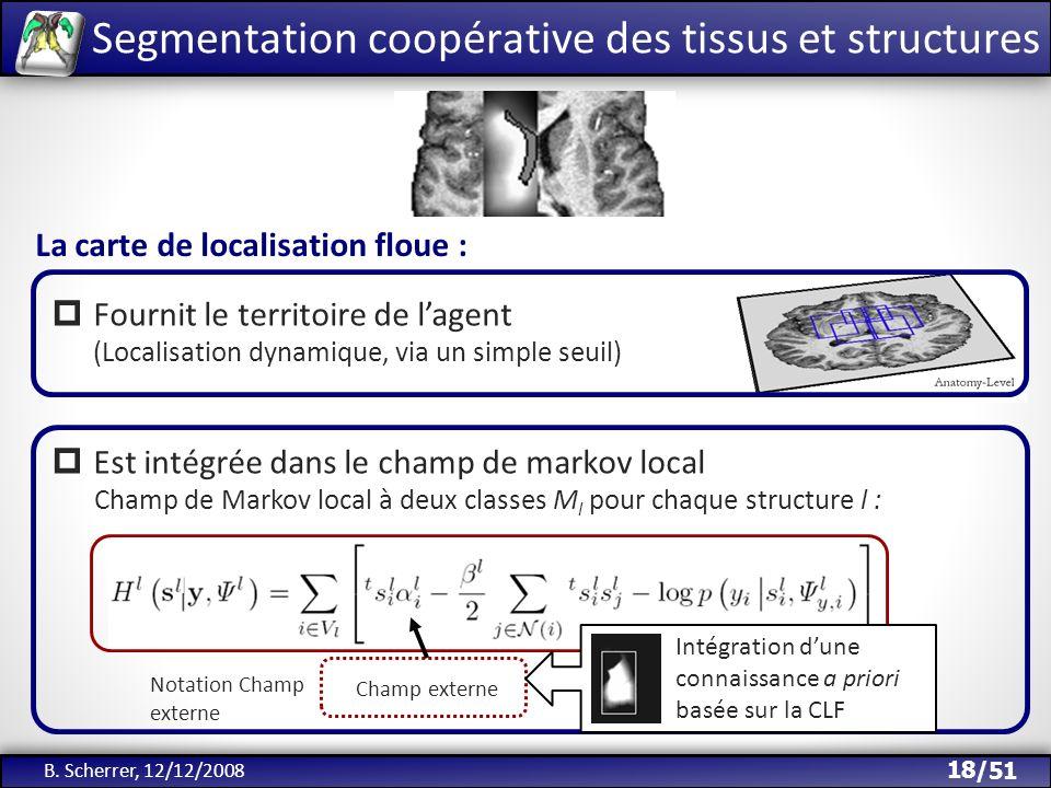 Segmentation coopérative des tissus et structures