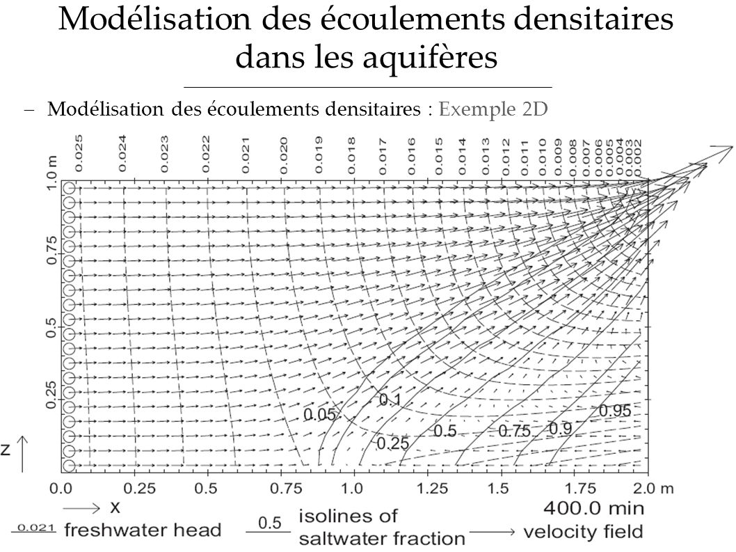 Modélisation des écoulements densitaires dans les aquifères